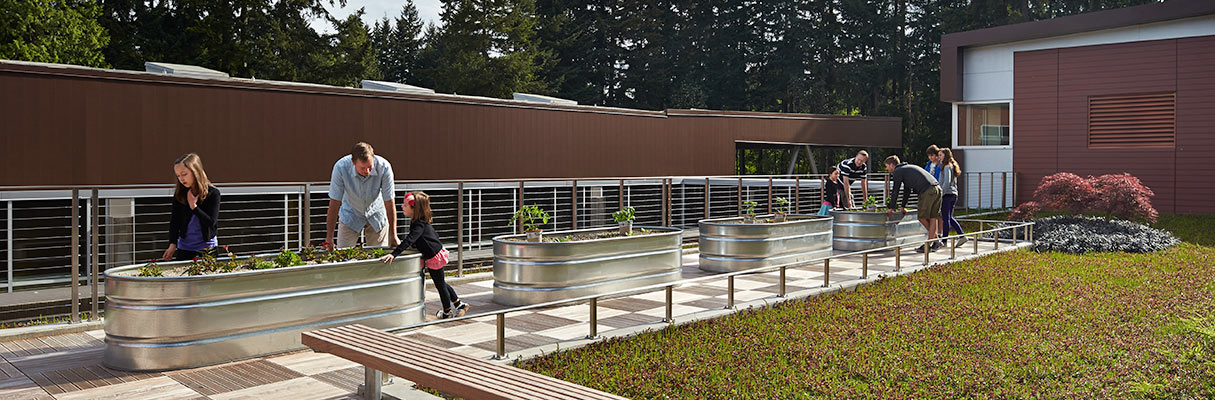 Cherry Crest Elementary School, Bellevue, Washington